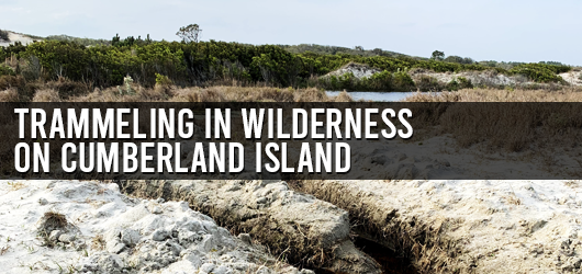 Trammeling in Wilderness on Cumberland Island
